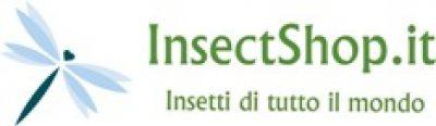 Insectshop